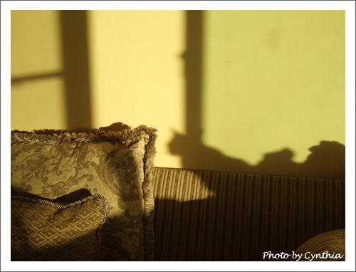 Sora的影子