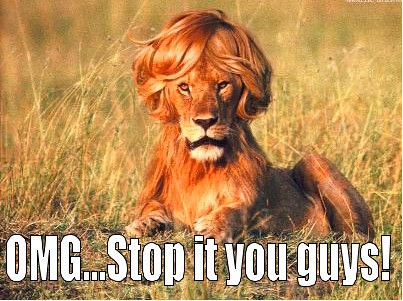 ... his genes to the next generation creating masses of gay-looking lions.