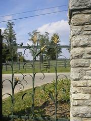 WOODFORD Gate 4