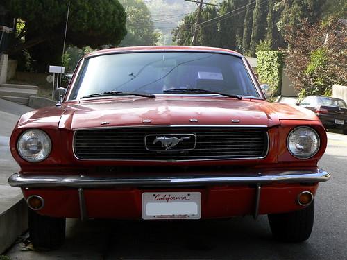 Mustang - 01
