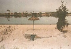 132-1.jpg (fullcontact) Tags: freedom war gulf iraq rape kuwait saddam gulfwar liberation invasion brutal desertstorm kuwaitphotolab desertrat