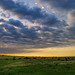 First Light on Comanche National Grassland - by Fort Photo