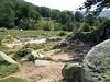 Dans la descente du GR20: ruines des bergeries de Pedinielli servant d'aire de bivouac