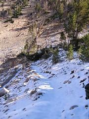 Down Snowyside Pass - fresh snow, no tracks