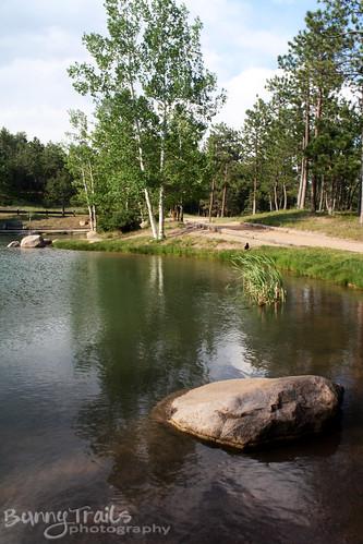 fr-pond