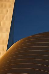 _MG_9420 (David Orias) Tags: california abstract building metal architecture hall losangeles concert metallic gehry disney walt refelction waltdisneyconcerthall sheetmetal