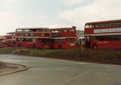 Newton Road depot early 1980 (aecregent) Tags: general devon roe leyland atlantean 910dtt 922gta 917dtt 902dtt