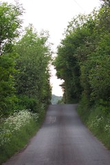 Lochgreen Road (Gillian Cowell) Tags: greenhill falkirk stirlingshire bonnybridge