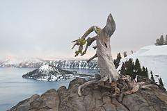 Crater Lake (jauderho) Tags: usa topv111 oregon canon bestof 5d craterlake wizardisland 2007 1635mm jauderho