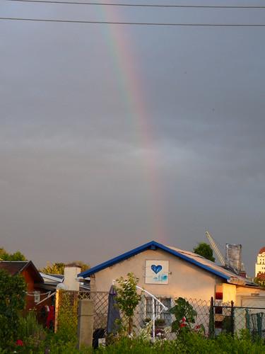 Regenbogen (04)
