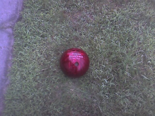 Bowling Ball thrown on my lawn