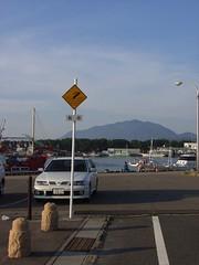 寺泊港 (7)
