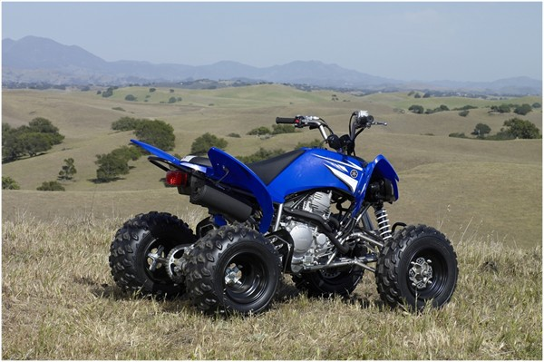 Yamaha Grizzly  Trade In Value