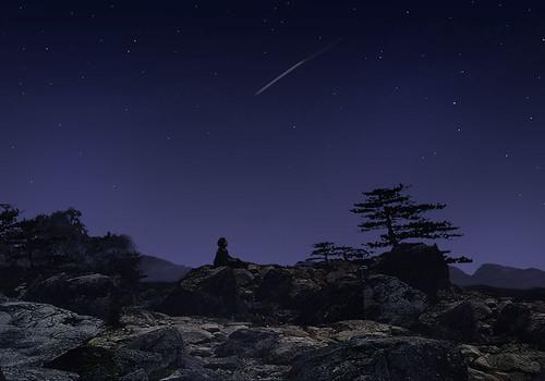 Meteorite Night