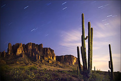 Superstitions under the stars (Rob Overcash Photography) Tags: longexposure arizona cactus sky mountain canon landscape nightshot desert saguaro startrails superstitions robo 30d naturesfinest tokina1224f4 569sec robotography robovercashphotography