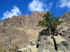 Au col 'franchissable' de l'épine rocheuse : le Capu Rossu