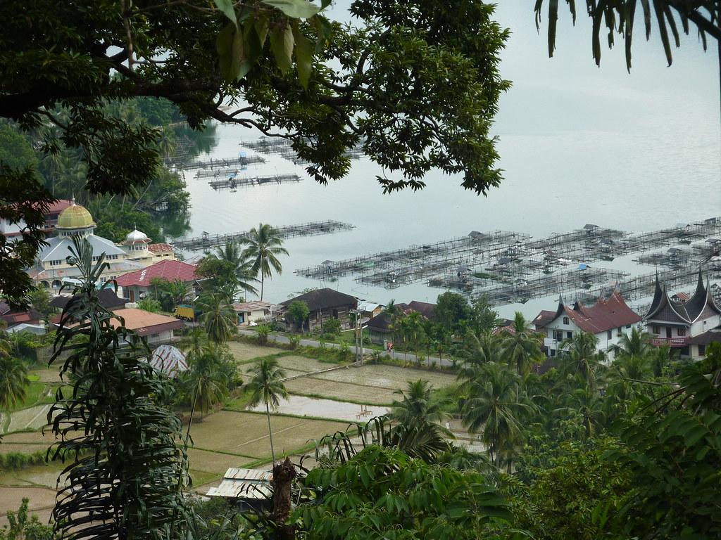 Sumatra-Lac Maninjau (172)