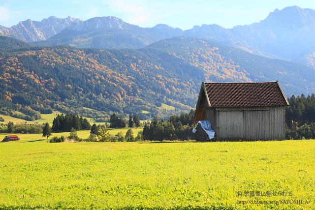 牧草と小屋