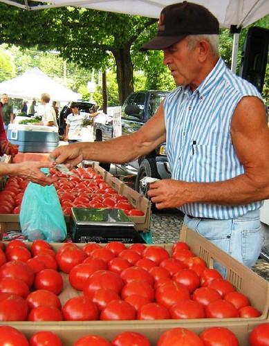 robert fahnestock tomatoes
