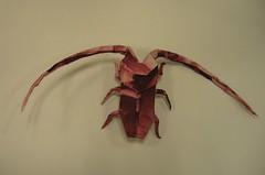 Rosalie des Alpes (PhillipWest) Tags: origami paperfolding papiroflexia
