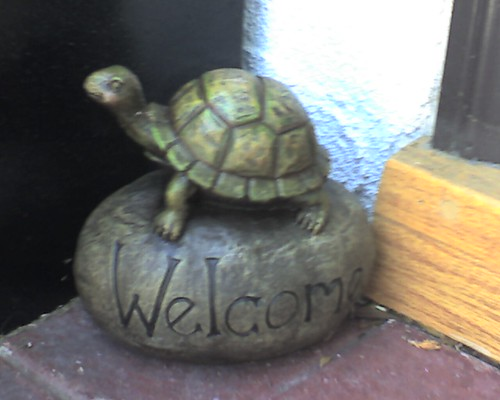 Turtle  Welcome