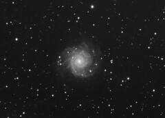 M74 (-mrh) Tags: galaxy astrophotography pisces m74 st8xme stf7 Astrometrydotnet:status=solved Astrometrydotnet:id=alpha20080434107512