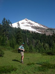 After meandering through forest, the trail pops out on the first of many meadows, and the first of many views of Mt Baker