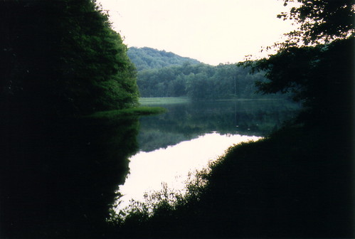 Yellowwood Lake II