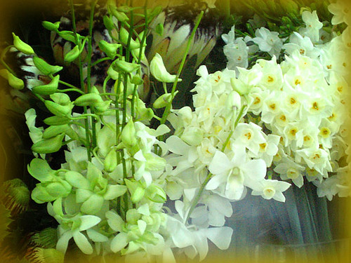 Flores de Mayo: the flowers of May