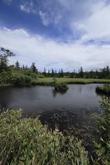 雲間の下の池塘