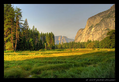 Yosemite Valley Morning (Mellard) Tags: california landscape scenic pines valley yosemite hdr 5xp mellard