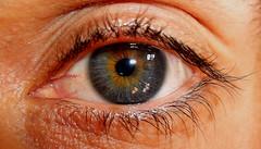 Eye (regina_im_regenbogenland) Tags: auge