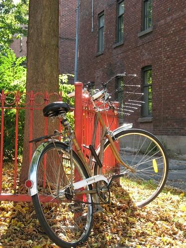 Vélo au soleil