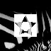 logo zebra star copy