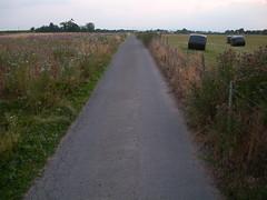 Taraloka   the road out