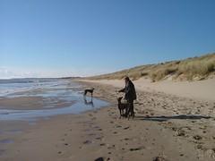 DSCF0865 (phoenixdigital1) Tags: sea sand curracloe