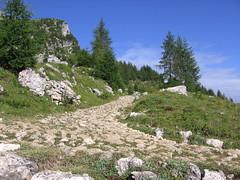 La vecchia mulattiera (mauro742) Tags: alps trekking hiking path natura trail sentiero footpath alpi montagna dolomiti naturalmente escursionismo zoldo escursione