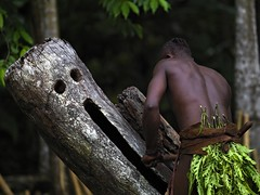 Man playing ghost drum, Malekula, Vanuatu (Eric Lafforgue) Tags: island pacific drum ile tribal hasselblad blackpeople tribe ethnic hebrides fantome ethnology vanuatu tribu oceania ebridi melanesia pacifique newhebrides ethnologie h3d oceanie ethnique lafforgue malekula ethnie ericlafforgue melanesian melanesie mallicolo ghostdrum nouvelleshebrides ericlafforguecom wwwericlafforguecom vanuatupicture vanuatupictures  wanuatuneue hebridennew hebridesnieuwe hebridennouvelleshbridesnuevas hbridasnuove