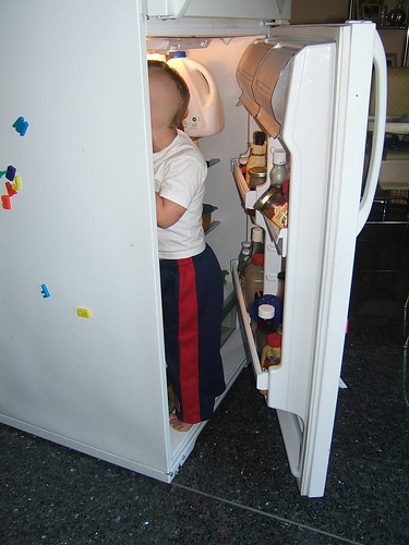 Raiding the fridge