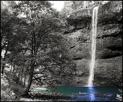 South Falls in B&W (ARKNTINA) Tags: park nature oregon cutout landscape geotagged psp waterfall northwest or falls waterfalls pacificnorthwest silverfallsstatepark americanwest monopod naturallandscape southfalls randomnature tamron1750 1750mm colorpop tamronspaf1750mmf28xrdiiildasphericalif geo:tool=gmif or07 random6 geo:lat=44879430 geo:lon=122660052