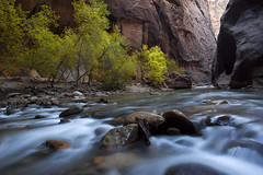 A Walk in the Park (Brent McGuirt Photography) Tags: park autumn cliff water colors river evening utah rocks canyon virgin boulders national zion narrows