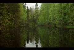 Pond front side (northmanimages) Tags: reflection nature water suomi finland pond kuru mywinners