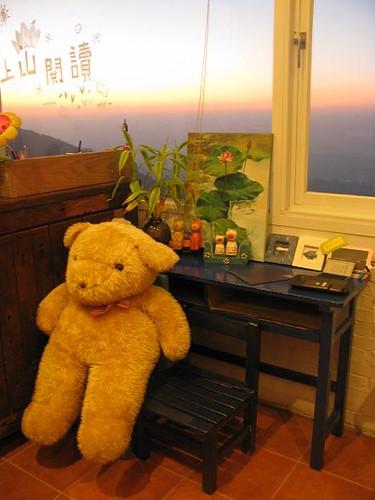 bear and dawn.JPG