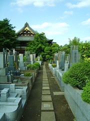 Path (Saw You On The Flipside) Tags: flowers japan temple tokyo shrine stones cemetary pots   markings tombs engravings  kiyose