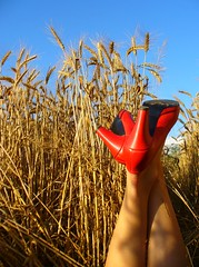 RED SHOES (nikaa) Tags: sky dorothy this freedom is photo think joy happiness ladolcevita explore coolest redshoes magicmoments colorphoto thewizardofoz supershot explore1 i flickrdiamond onlythebestare artsyfartsyfeet