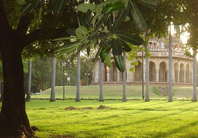 Tomb & Trees
