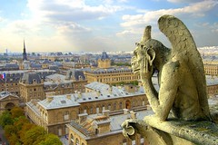 View with gargoyle (Ignacio Lizarraga) Tags: summer paris france church iglesia nikond50 notredame gargoyle verano zyber goldenphotographer