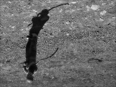the shadow of my shadow (Ferran.) Tags: bo