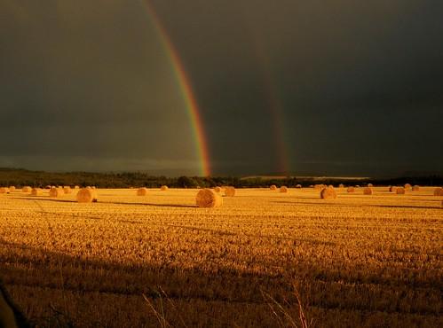 Double Rainbow!!!!
