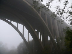morning fog at the bridge (leafy) Tags: bridge urban nature water stream pittsburgh watershed environment restoration development recovery frickpark ninemilerun sustainable sustainability wetland ecosystem i376 nmrwa firsttheearth